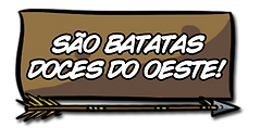 pag05_opçaoB.png