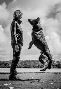 Photo Shoot for The Beacon Dog