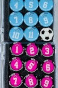 Magnet Bundle (2 sets of Magnets)