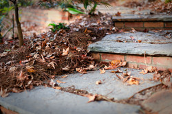 stone and brick path steps