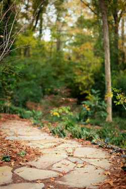 shade garden winding stone pathway