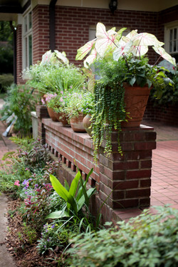 container plantings and flower bed