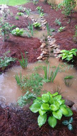 rain gardens at work