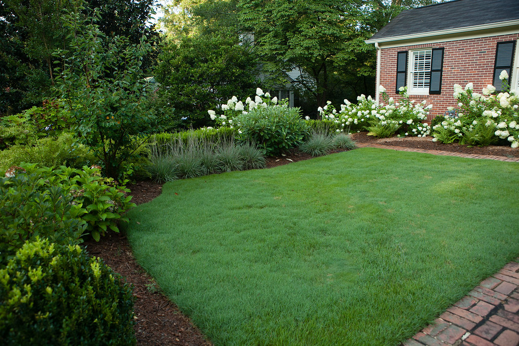front garden: grasses & shrubs