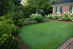 front garden: grasses & shrubs