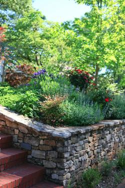 spring garden in bloom - corner