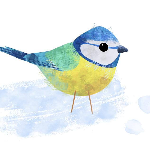 SWEDISH BIRDS
