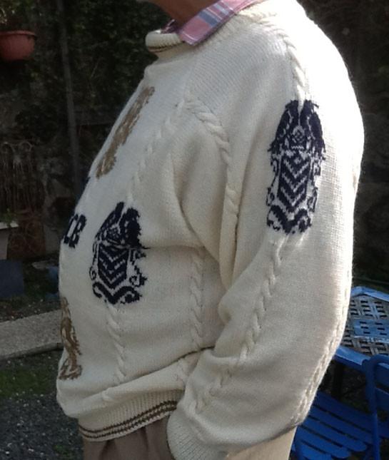Heraldic Jersey Sleeves