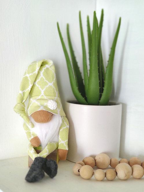 Green Spring Gnome