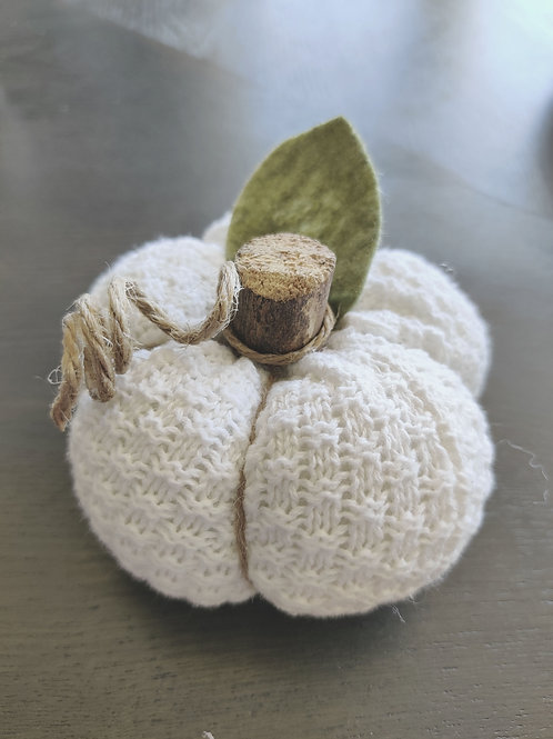 Small White Sweater Pumpkins