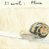 21 avril 2020 Pluie Sylvie