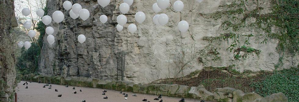 Les Ballons Blancs, janvier 2015, image extraite de la vidéo