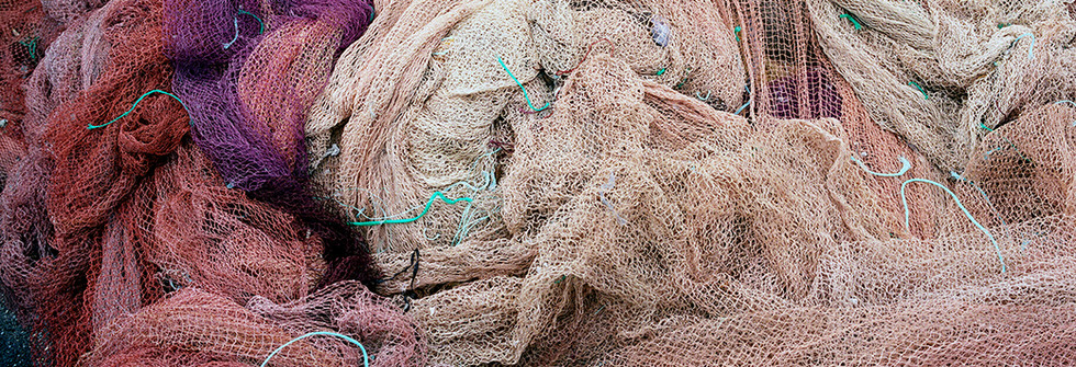 The net, Galicia