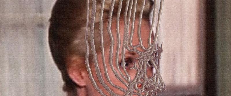 Pensée sauvage, Broderie, photographie sur toile, 22 x 28 cm, 2009
