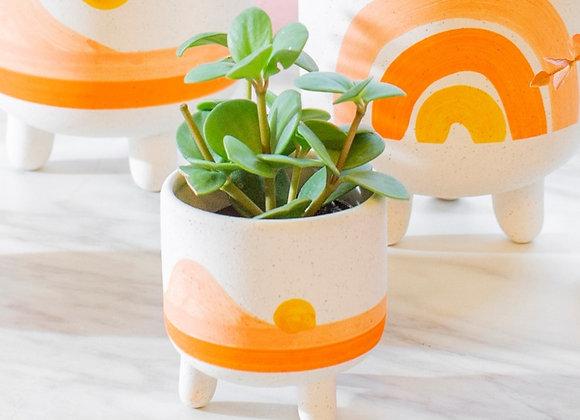 Mini Sunset Planter