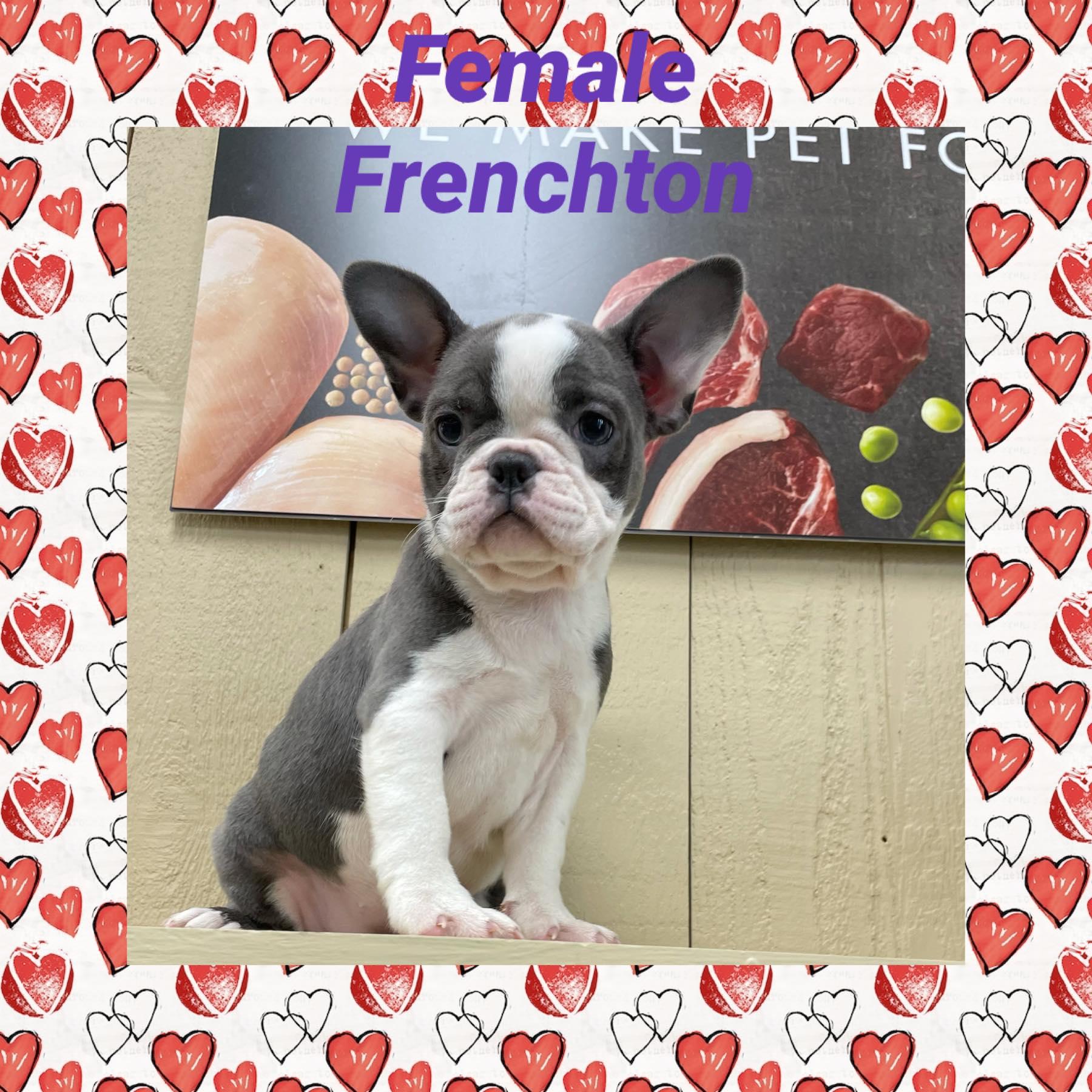 FRENCHTON