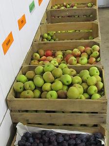 Apfelverkauf
