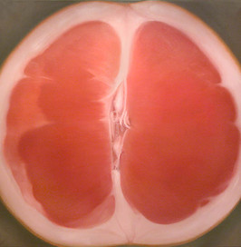 Grapefuit #8