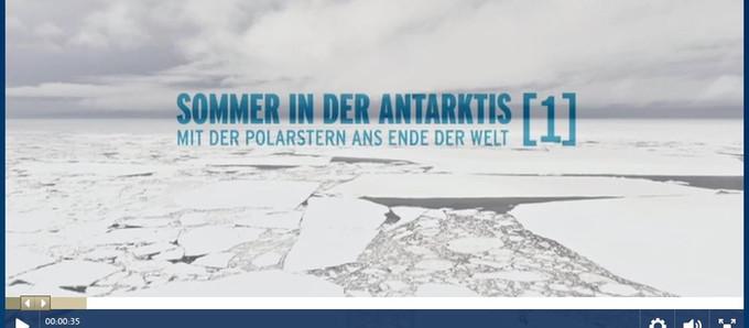 Summer in the Antarctica