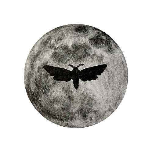 """""""Moth Silhouette"""" #17 of 31"""