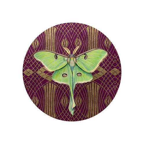 """Luna Moth II"" #18 of 31"