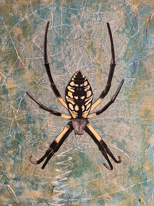"""""""Spider"""" Charcoal, Pastel and Acrylic Painting 8x10"""""""