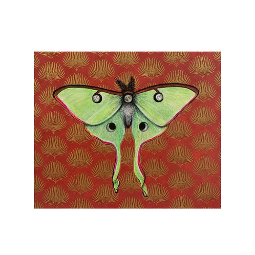 """""""Luna Moth and Moons"""" #21 of 31"""
