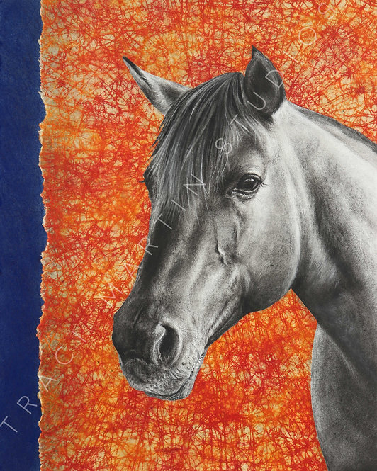 """""""Horse & Primaries"""" Signed Giclée"""