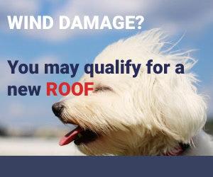 Digital Dog Roof Wind Damage Set