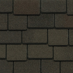Woodland_Woodberry_Brown