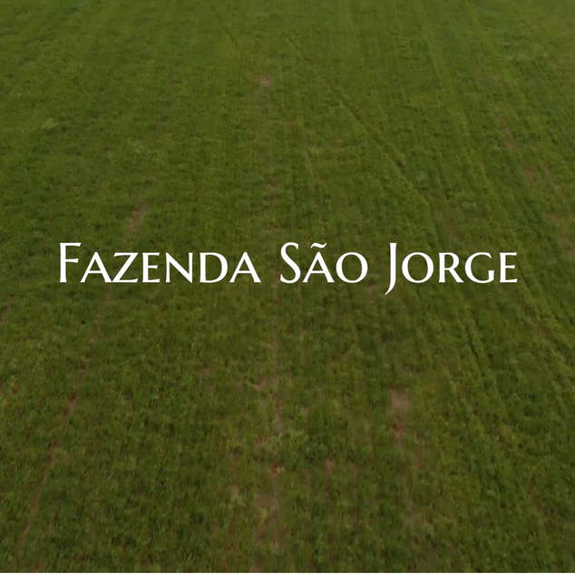 Fazenda São Jorge.mp4
