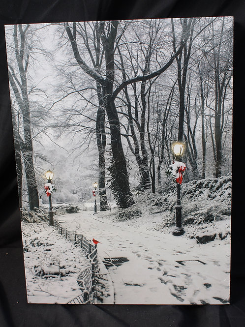 Wintery Park Path LED canvas