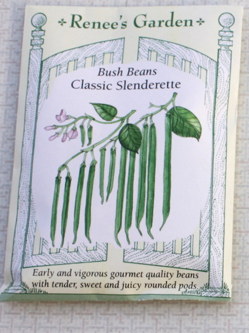 Renee's Garden Bean - Bush Classic Slenderette