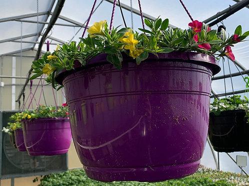 Hanging Baskets - 14-inch - Purple baskets