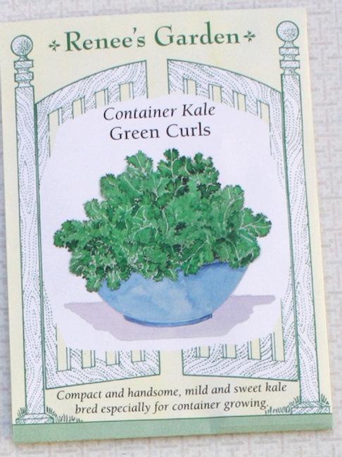 Renee's Garden Kale - Container Green Curls