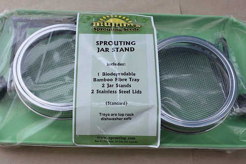 SproutingJar Stand - Standard