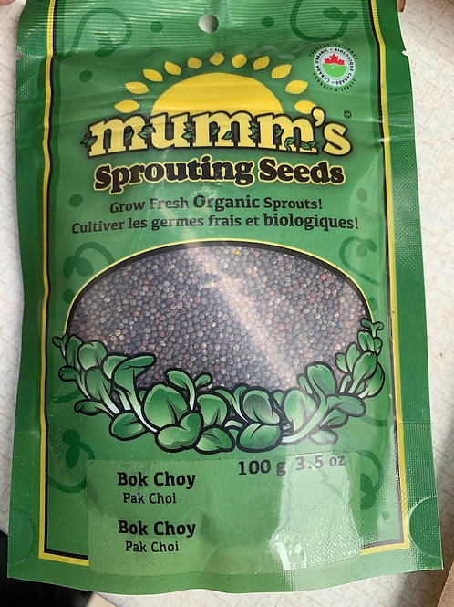 Sprouting Seeds Bok Choy