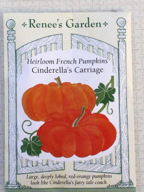 Renee's Garden Pumpkin - Heirloom Cinderella's Carriage