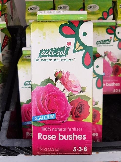 Acti-Sol - Fertilizer for Rose Bushes