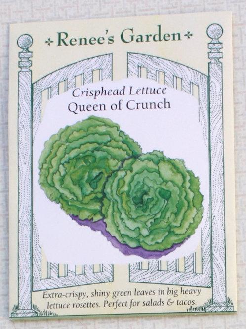Renee's Garden Crisphead Lettuce - Queen of Crunch