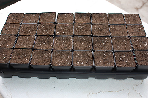 Starter Seed Tray without soil