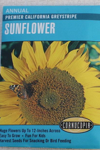 Cornucopia - Sunflowers - Premier California Greystripe