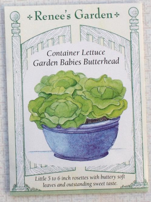 Renee's Garden Lettuce - Container Garden Babies Butterhead