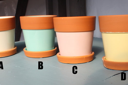 Terracotta pots with Colour Body