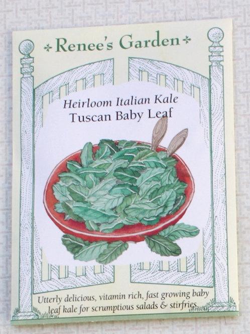 Renee's Garden Kale - Heirloom Baby Leaf Tuscan