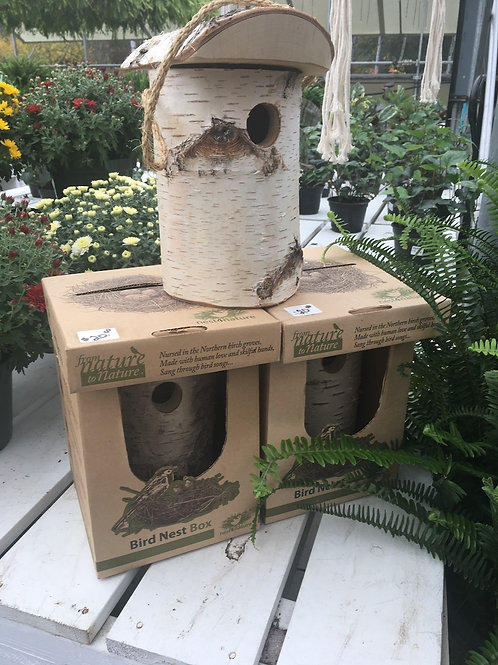 Birch Bird Nest Box