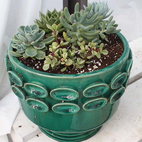 Emerald Green Pot planted with succulents