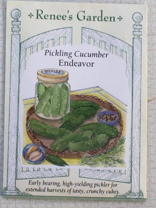 Renee's Garden Cucumber - Pickling - Endeavor