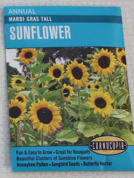Cornucopia - Sunflowers - Mardi Gras Tall