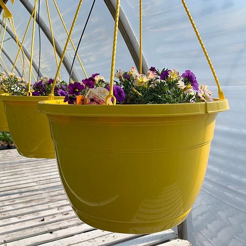 Hanging Baskets - 14-inch - Yellow baskets